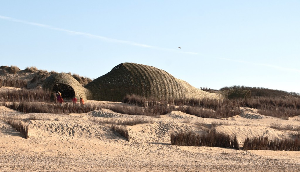 Sandworm at the Wenduine dunes, Belgium.
